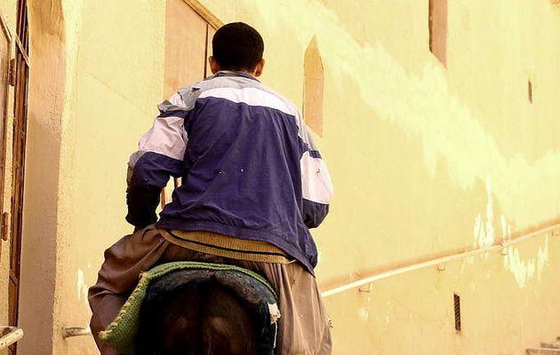 Dar, douar, dénia...Ou les potentiels fondamentaux d'une Maâna écologique algérienne moderne