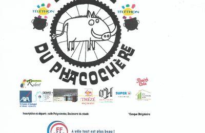 """Rando dans le cadre du Téléthon à Saint Aubin D'Aubigné le 3 Octobre 2021 """"La Ronde du Phacochère"""""""