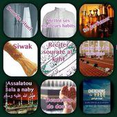 Les sounnas du Vendredi - Salafidunord