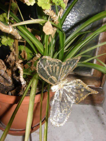 Différents refuges à insectes que nous proposons