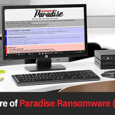 How to remove Paradise Ransomware from your system?