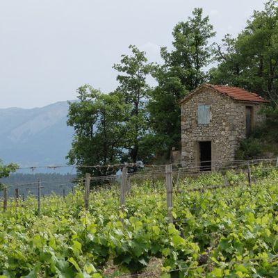 Les cabanons de vigne (2) / Balade à Châtillon-en-Diois dans la Drôme