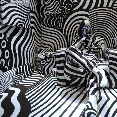 VISIBLE & INVISIBLE/ CAMOUFLAGE ZEBRE / 6e