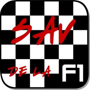 F1 2009 -GP de Hongrie : Si si il y a bien eu une course !!!!