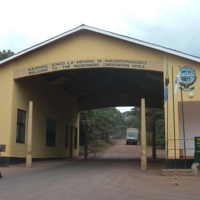 J10 - Le Ngorongoro, huitième merveille du monde