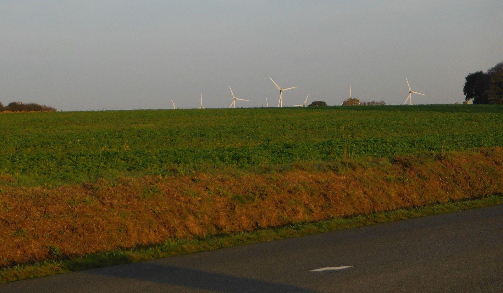Le moulin à vent, ancêtre de l'éolienne, est cependant plus joli.