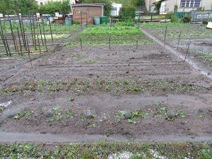 A gauche juin 2019, à droite le même jardin en septembre