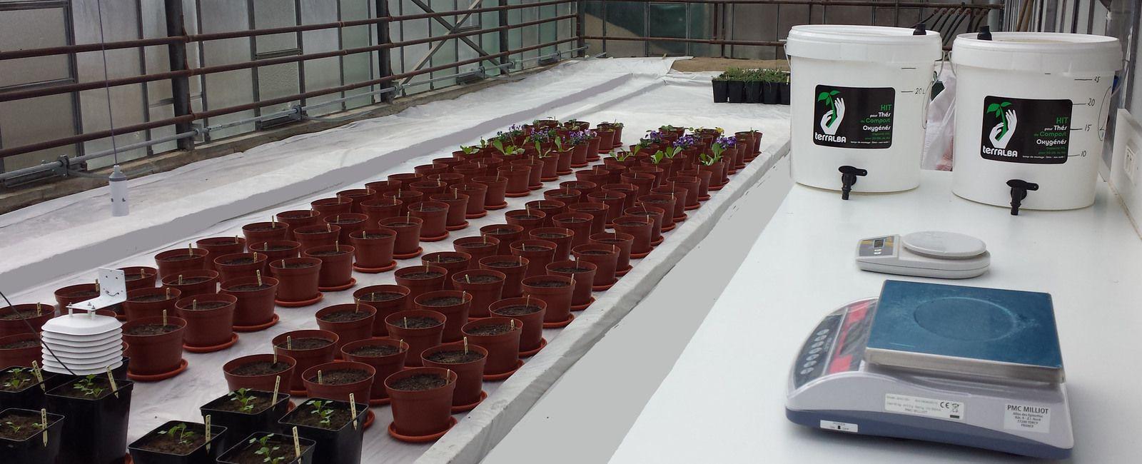 ACT BIO System pour les pros - R&D >solutions agronomiques