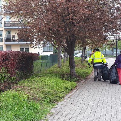 Franc succès pour l'opération de nettoyage du printemps !