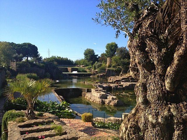 Le Jardin de Saint-Adrien - Hérault