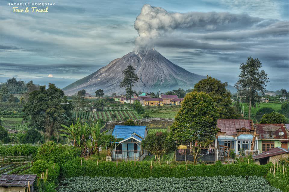 Sinabung - 26.01.2021 / 07h21 - photo Nachelle homestay