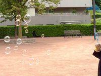 Le jeu des bulles de savon (avec les enfants de maternelle)