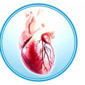 L'insuffisance cardiaque : définition, symptômes, traitement