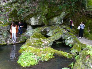 Préf. de Shiga: Le temple Ishiyamadera 石山寺 sur les rochers