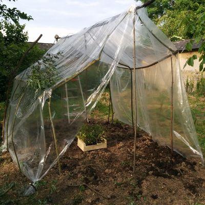 """Construction d'une """"cabane"""" à tomates"""