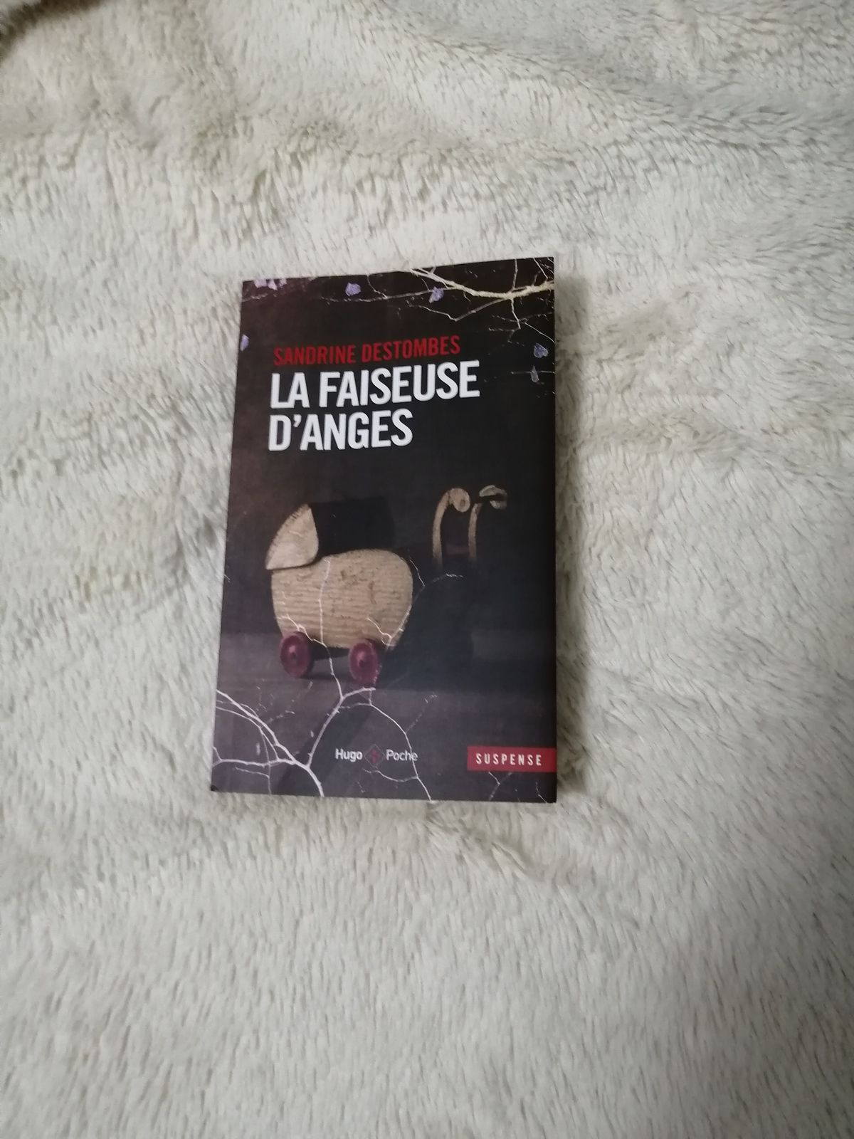 LA FAISEUSE D'ANGES de Sandrine DESTOMBES