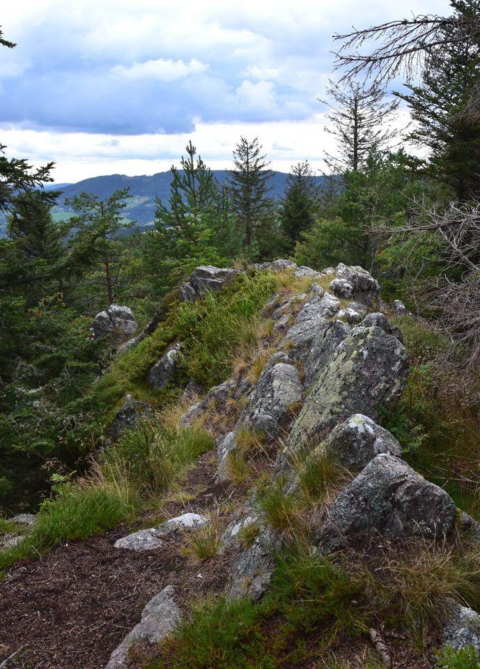 Au sommet de la Grande Roche