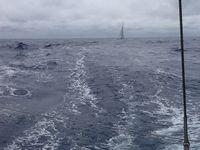 A proximité des Açores