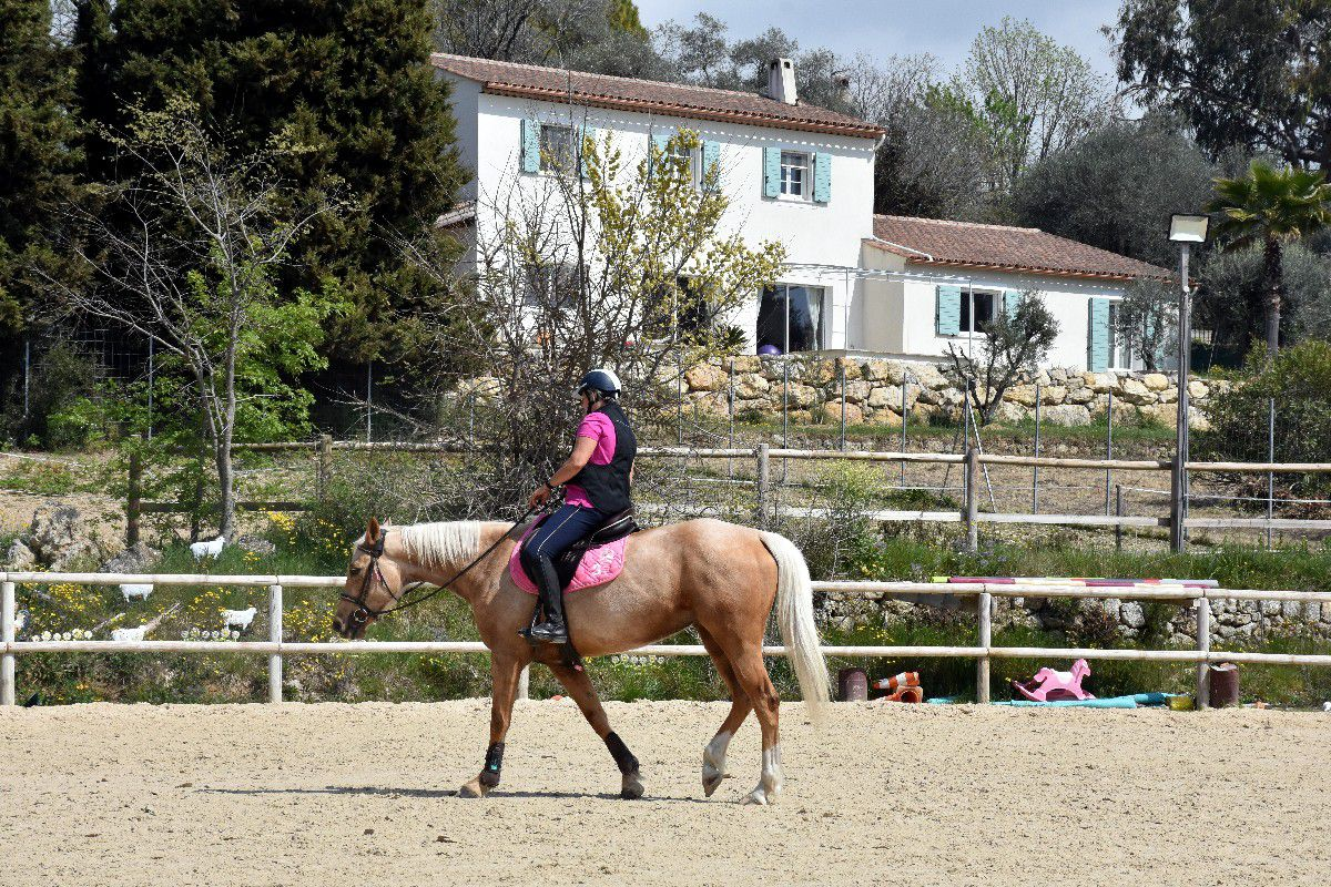 LA PASSION DU CHEVAL BY CELIA