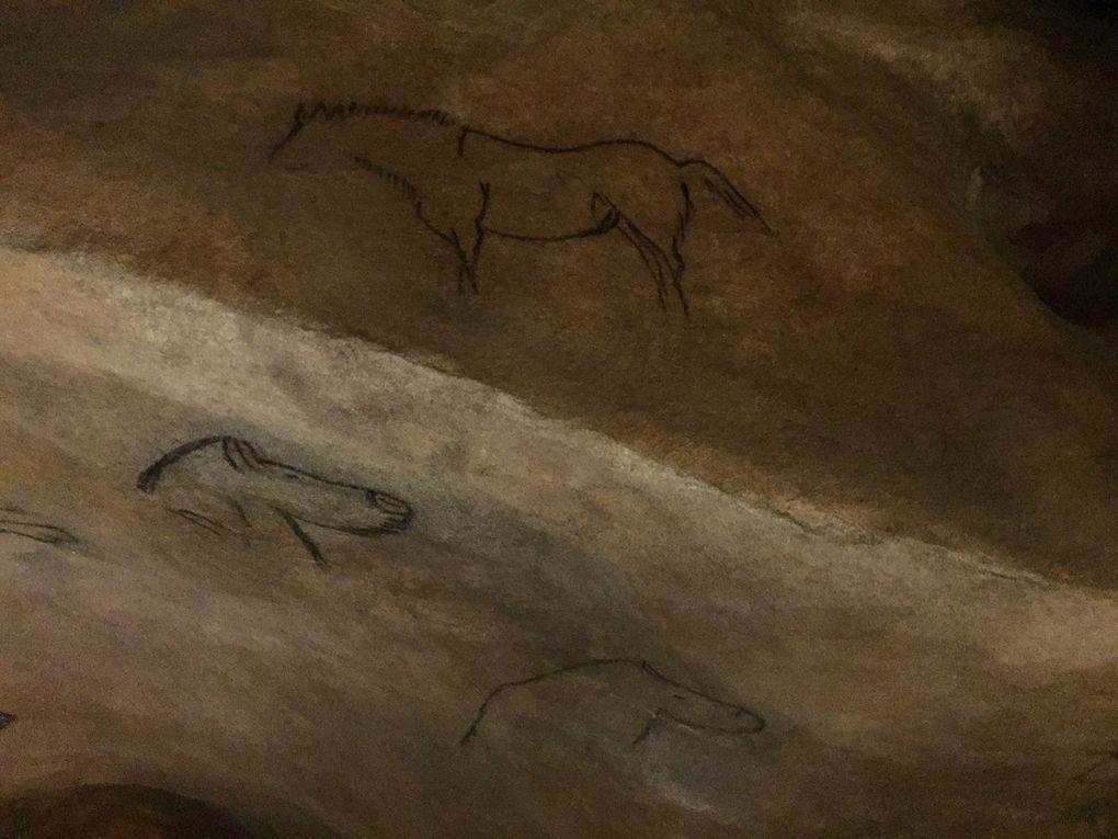 De la grotte de Niaux au plateau de Beille, l'Ariège des chevaux de Mérens, sauvage et magnifique