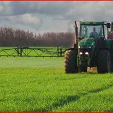 Une interdiction mondiale des herbicides à base de glyphosate causerait des dommages considérables à l'économie et à l'environnement, selon une étude