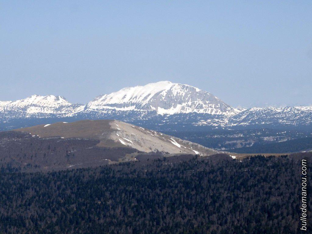 Le plateau du Vercors enneigé et le Grand Veymont (2341 mètres)