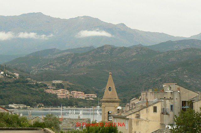 De Murato, à Nonza, Piediccroce,La porta, St Florent, Pina,le vignoble d'Aléria...Veaux, vaches, cochons, ânes...