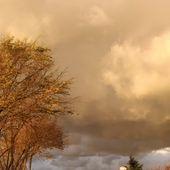 Le Mont Soleil, le soir, vu par Thomas - crea.vlgomez. Victoria Lynn , photographe et bricoleuse touche à tout.over-blog.com