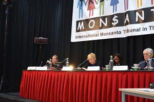 À La Haye, des témoins contre Monsanto