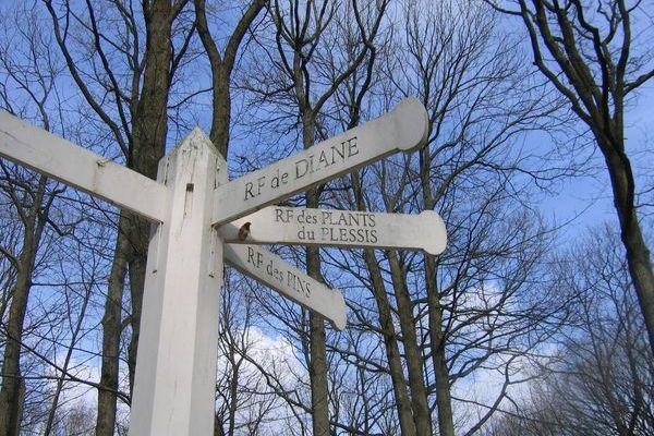 Randonnée de Breuillet Bruyères le Chatel->Brétigny - 26 Km 2/3
