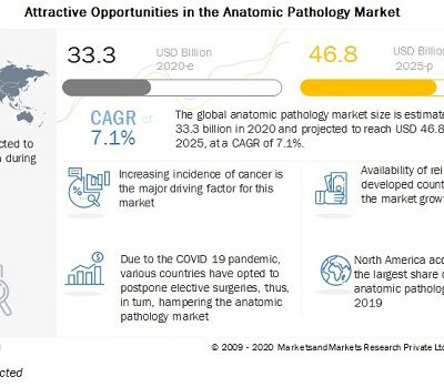 Anatomic Pathology Market : Expand at a Healthy Growth Rate in the Coming Years