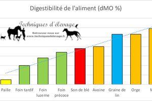 Le cheval digère moins bien les céréales que le fourrage ?