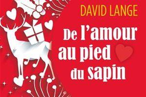 De l'amour au pied du sapin de David LANGE