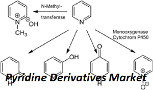 Pyridine Derivatives Market: Business Overview, Challenges, Opportunities, Trends and Market Analysis by 2022