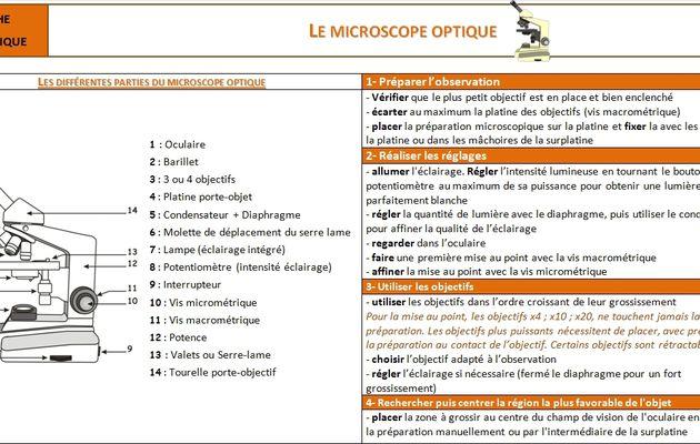 Utiliser le microscope optique
