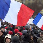 Au moins 250 gardes à vue lors de la manifestation anti-Hollande