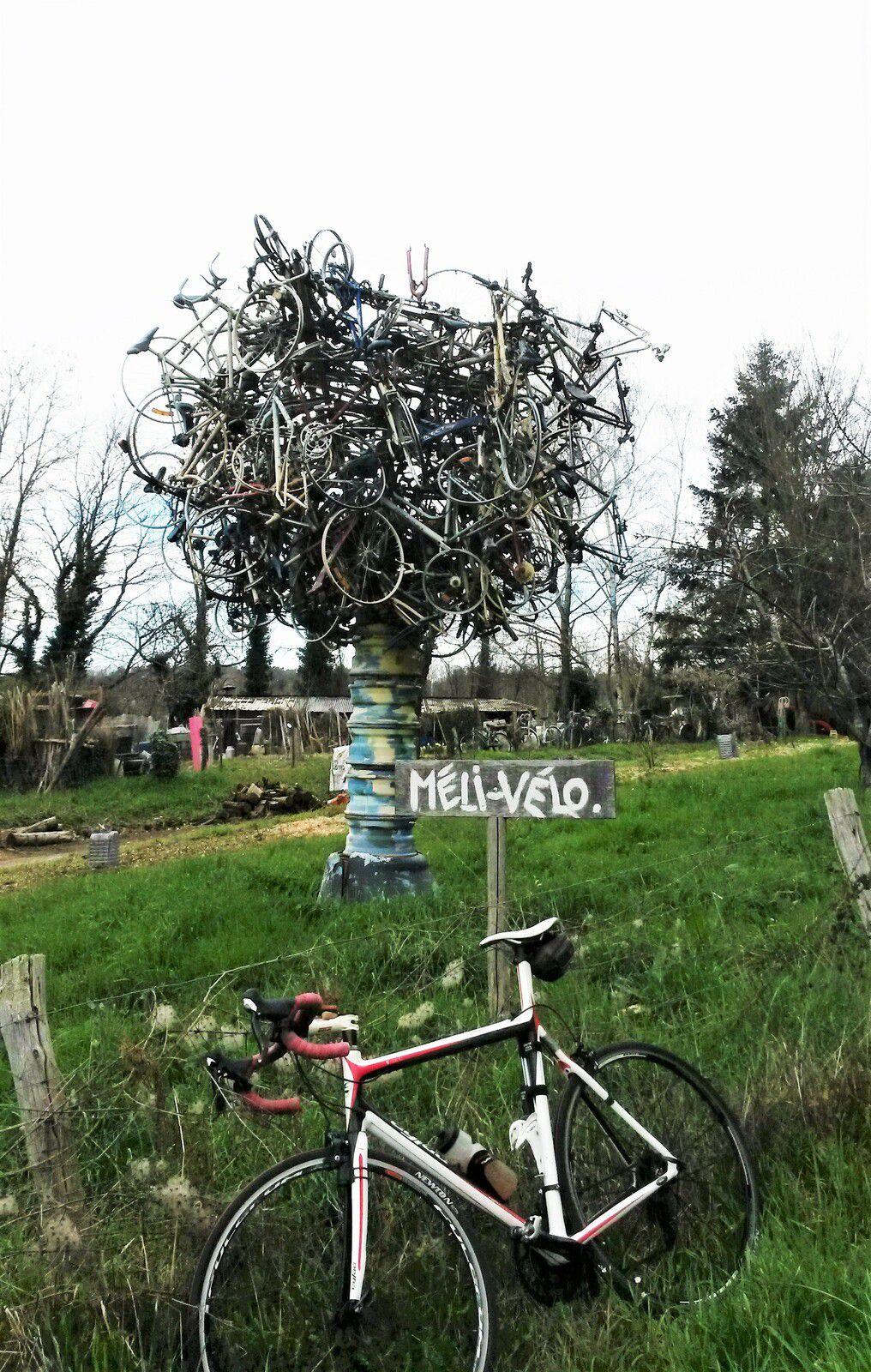 2021 Bravo l'artiste pour cet arbre de vie ( Méli-vélo ) ! Le vélo, au premier plan terminerait très joliment l'oeuvre.