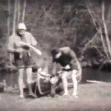 Haute-seine,Serein et Chalaud en .....1953
