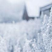 Pourquoi l'hiver ne tombe pas toujours le 21 décembre