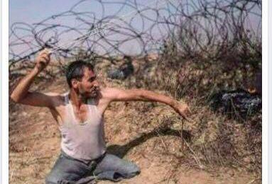 Gaza : bravo au photographe palestinien qui remporte le Prix Bayeux ! Avec Mise à Jour !
