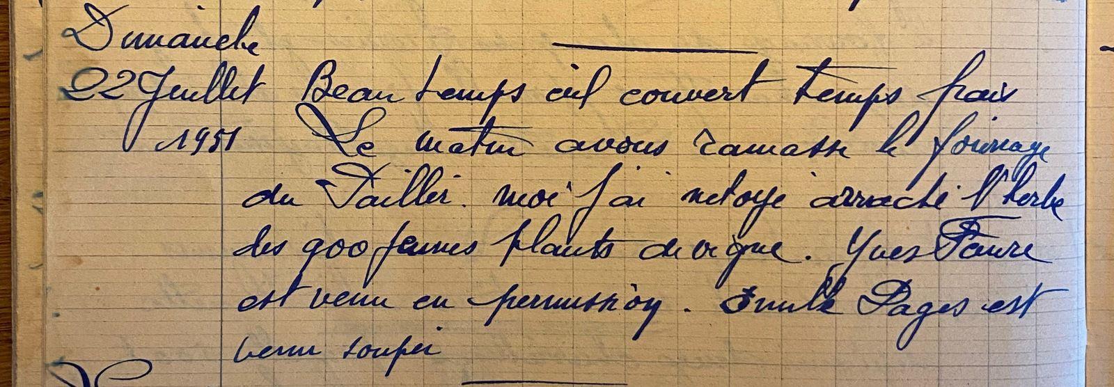 Dimanche 22 juillet 1951 - les 900 plants de vigne