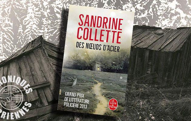 📚 SANDRINE COLLETTE - DES NOEUDS D'ACIER (2013)