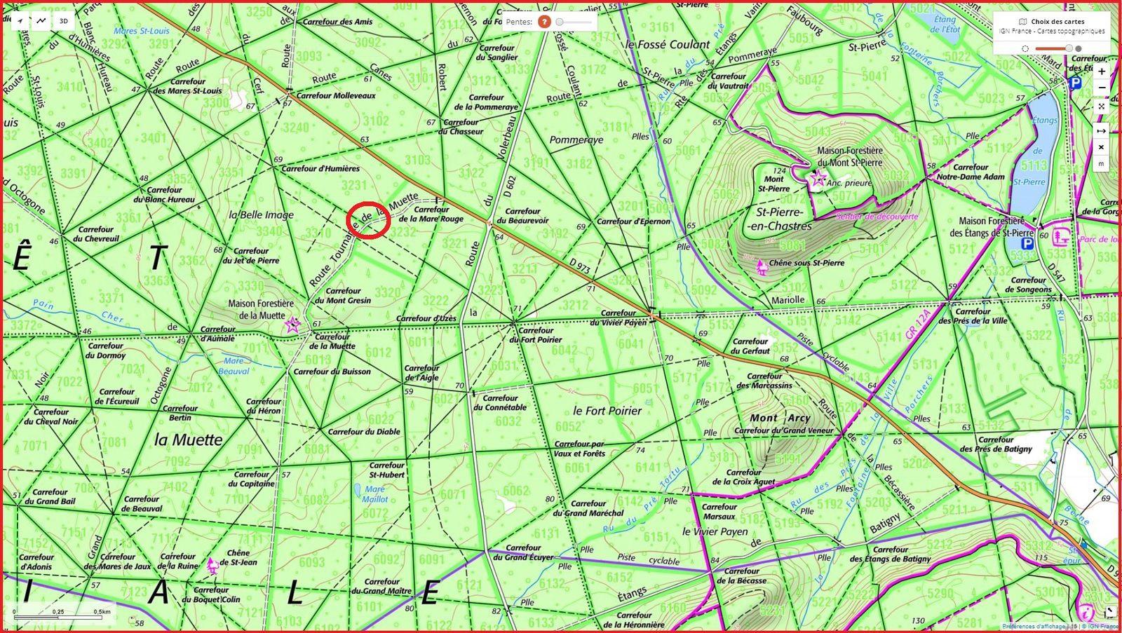 carrefour_Route d'Humières_Route Tournante de la Muette