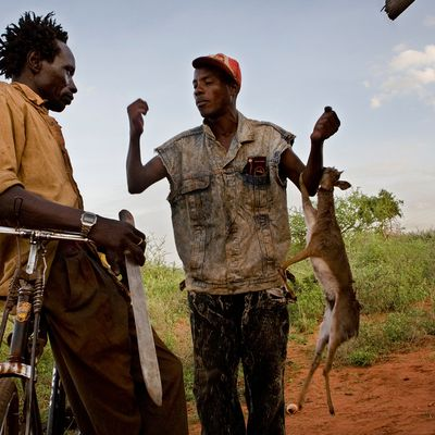 Bushmeat in Central Africa