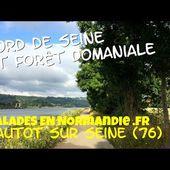 Bord de Seine et forêt, randonnée à Hautot-sur-Seine (76)