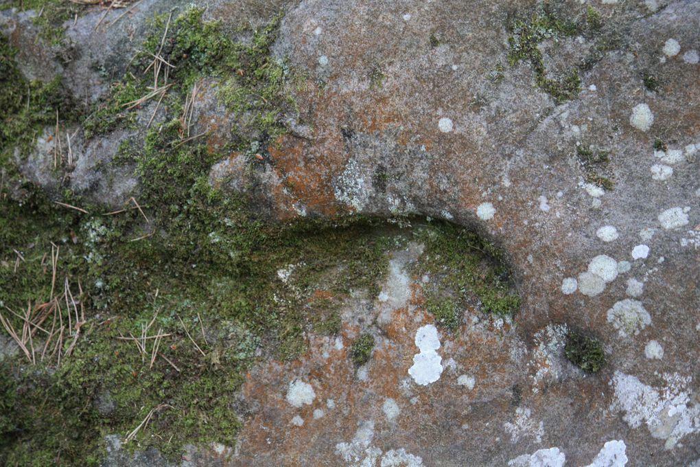 Fontainebleau rochers de Barbizon Photos: Emmanuel et Mariela 2011 M. et Em. presse