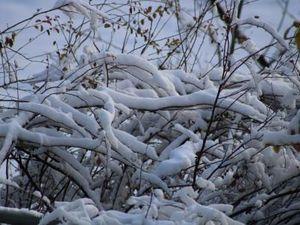 snow et neige aussi