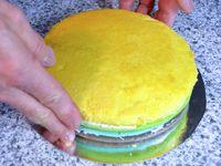 The Rainbow Cake...