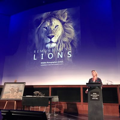 Remembering lions - Londres 2019