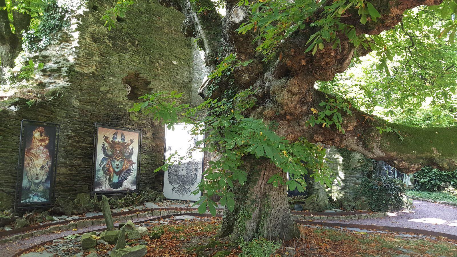 le Naïa Museum, musée des arts de l'Imaginaire, est installé depuis 2015 dans le chateau de Rochefort-en-Terre (56)